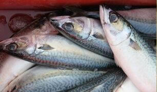 Conozca las diferentes formas de preparar pescado para Semana Santa