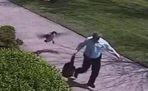 Policía termina en el suelo tras terrorífico ataque de un ganso
