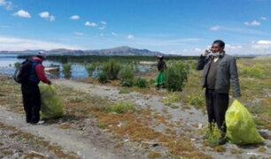 Puno: recolectan casi 18 toneladas de basura del Lago Titicaca