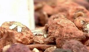 La maca: pequeño en tamaño y poderoso en nutrición