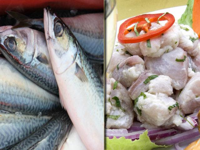 Sepa cómo reconocer pescados y mariscos en buen estado