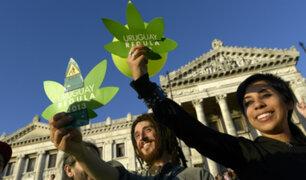 Comenzaron a registrarse consumidores de marihuana legal en Uruguay
