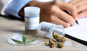 Chile inició la venta de medicamentos a base de marihuana