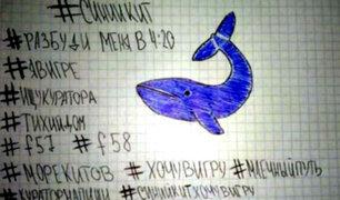 Ministerio de Educación se pronuncia por posibles casos del juego 'ballena azul'