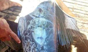 El misterio del pez 'extraterrestre' hallado en Filipinas