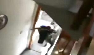 España: toro siembra pánico al ingresar a una vivienda