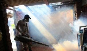 Aumenta a 31 el número de muertes por dengue en Piura