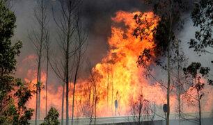EEUU: incendio forestal consume miles de hectáreas en California y Arizona