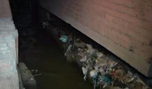 Desborde de canal de regadío inunda viviendas en Ate Vitarte