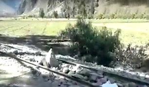 Cusco: maestros en huelga bloquean vía férrea a Machu Picchu