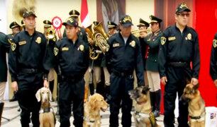 Orgullo Peruano: toda la destreza de la Brigada Canina de la Policía Nacional