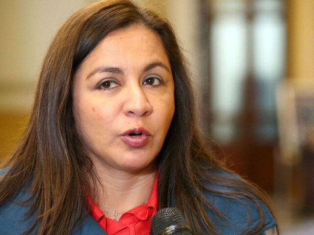 """Marisol Espinoza:  """"Si es que el proyecto está de acuerdo a lo que dice la Constitución, se aprobaría en dos legislaturas"""""""