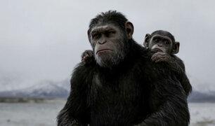 """""""El Planeta de los Simios: La Guerra"""" recibe buenas críticas por parte del público"""