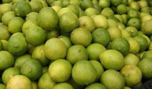 Limones colombianos invaden mercados de Tumbes