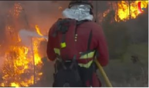 Registran 150 incendios forestales activos en Portugal