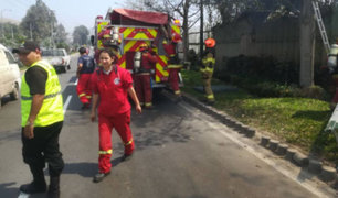 Incendio afectó sector de cultivos de la Universidad Agraria La Molina