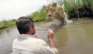Mira el emotivo reencuentro entre una leona y su rescatista
