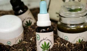 Marihuana medicinal: ¿Por qué el uso de esta planta causa tanta polémica?