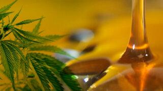 Cannabis medicinal: todo lo que debes saber sobre su uso con fines terapéuticos