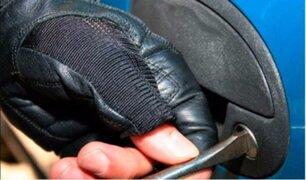 Carabayllo: policía desbarata banda dedicada al robo de vehículos