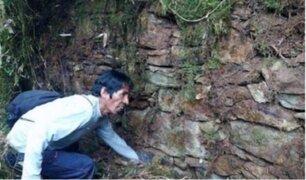 Cusco: pobladores descubren posible ciudadela inca cubierto por vegetación