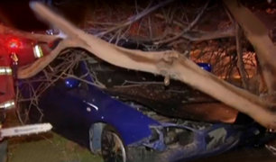 La Molina: conductor se queda dormido y se estrella contra árbol