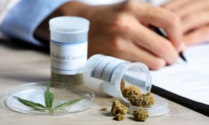 Conozca los principales beneficios del uso de la marihuana medicinal