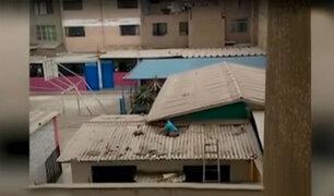Los Olivos: niño con habilidades especiales cae desde el techo de su salón de clases