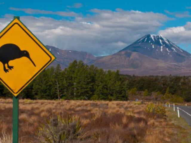 Nueva Zelanda: ¿Qué necesitas para viajar como turista?