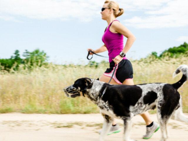 Tener perro evita problemas cardiovasculares