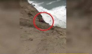 Tragedia en Pasamayo: pasajero se lanzó de bus segundos antes de caer a abismo