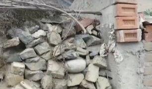 Víctimas inocentes: dos niños mueren al ser aplastados por un muro mal construido