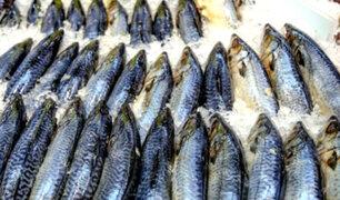 Sepa cómo reconocer un pescado bueno y fresco