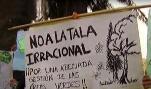 La Molina: vecinos denuncian tala de árboles por ampliación de vía