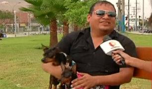 Así fue el emotivo reencuentro entre un peruano y sus mascotas luego de un año
