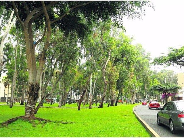 San Isidro: PJ ordena suspender obras en avenidas Aramburú y Parque Sur