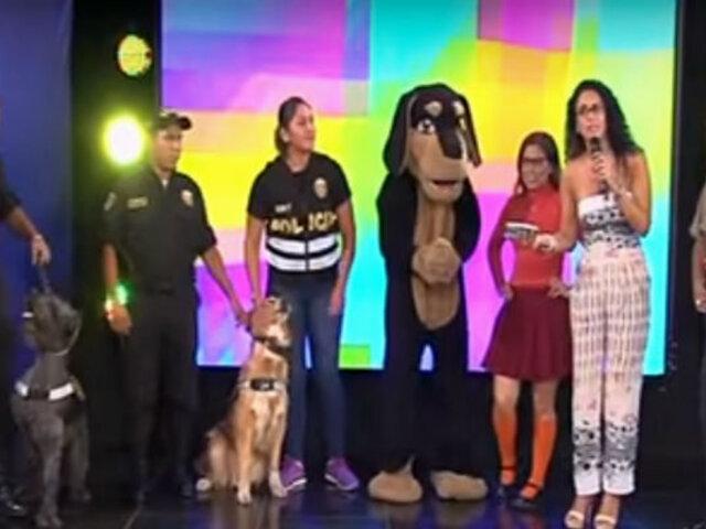 Scooby Doo Papa: policías se contagian de la fiebre y bailan la canción de moda en Combinado
