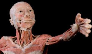 Bodies: la exposición de cuerpos humanos reales llegaron a Lima