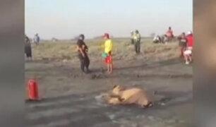 Arequipa: hallan cuerpos de pescadores desaparecidos hace 10 días