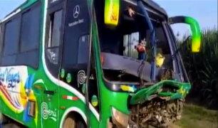 Trujillo: 3 muertos deja choque entre omnibus y camioneta