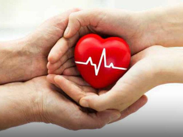 La lucha por sobrevivir: mitos y mentiras en la donación de órganos