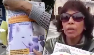 Chiclayo: familia ofrece un pasaje al mundial por mascota desaparecida