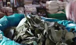 Conozca las propiedades de la milenaria hoja de coca