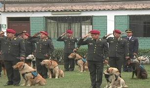 Policía certifica a 23 canes especialistas en búsqueda y rescate de personas