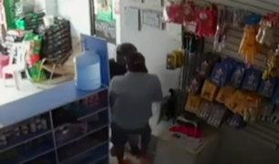 Piura: cámaras de seguridad registran asalto a una veterinaria