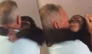 EEUU: el emotivo reencuentro de un chimpancé con sus excuidadores