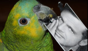 Argentina: loro se vuelve viral al cantar tema de Luis Miguel