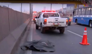 Hombre muere tras ser atropellado por bus interprovincial en la Panamericana Norte