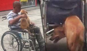 Filipinas: perro ayuda a su dueño con silla de ruedas a empujarla