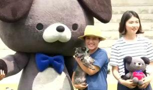 Corea del Sur: Esta campaña busca que la gente adopte perros en lugar de comérselos [VIDEO]